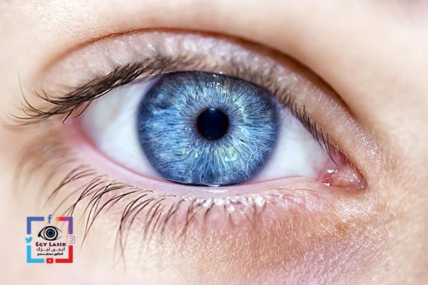britty eyes