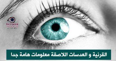 cornea and contact lens
